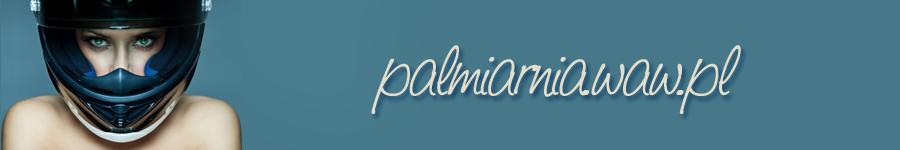 Gdzie i jak odebrać prawo jazdy | kursy i szkolenia na prawo jazdy - http://palmiarnia.waw.pl/